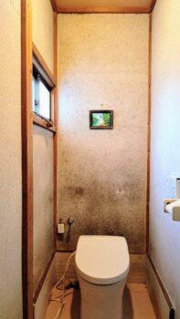 【筑西市】トイレのクロス貼りかえでいい気分